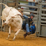 SATURDAY – Rodeo & Bull Riding